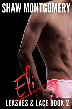 Eli by Shaw Montgomery - Gay Romance Ebook Cover